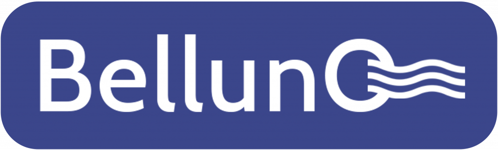 Belluno logo исходник.png